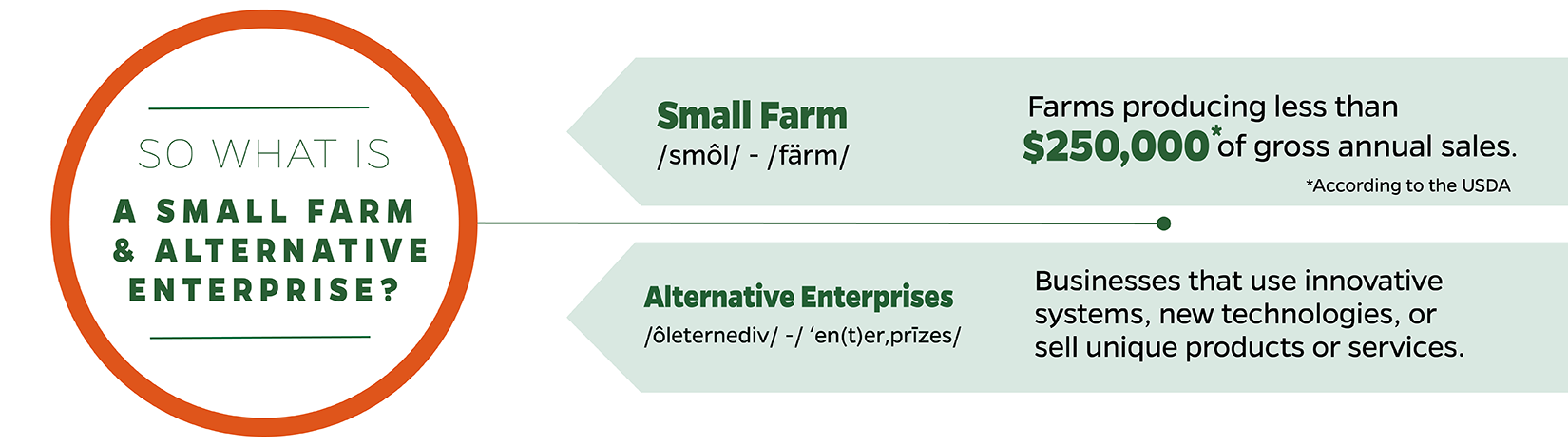 So what is a small farm and alternative enterprise? Small farm - a farm producing less than $250,000 in annual sales. Alternative Enterprise - business that uses innovative systems, new technology, or sells a unique product or service.